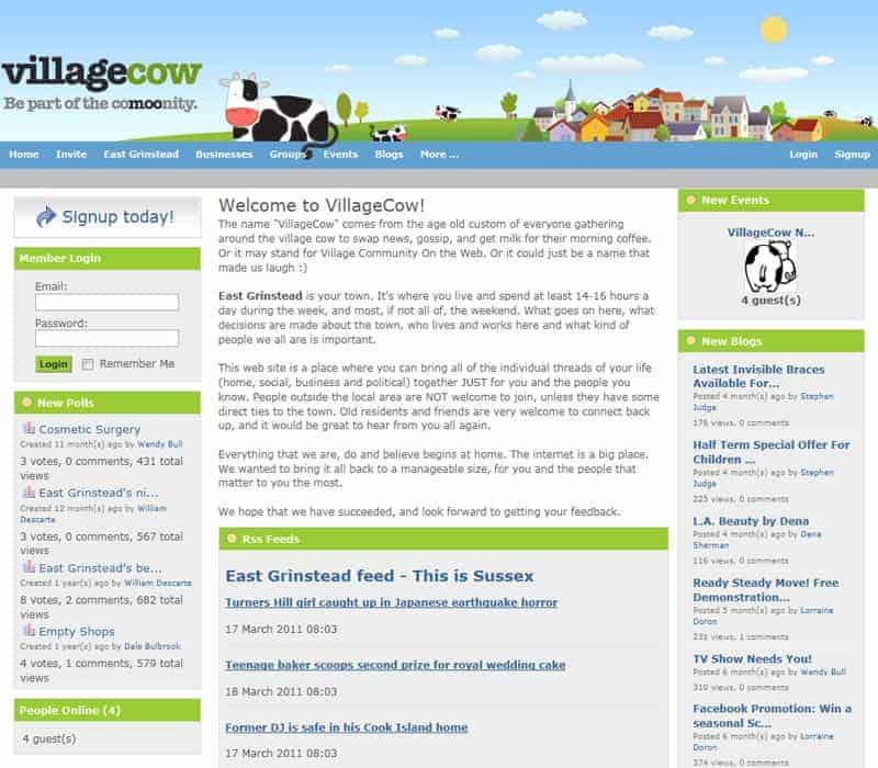 village-cow